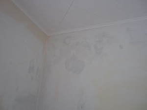 3 - Cracks in the plaster, repaired and ready for primer